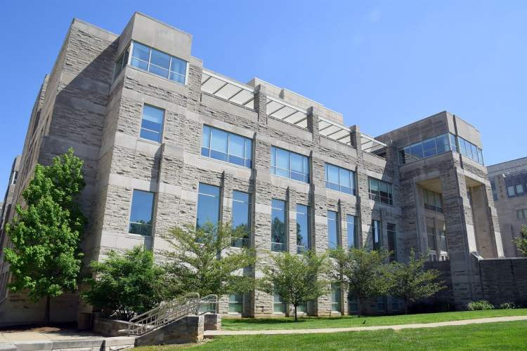 What are the Colleges Universities accepting MBA Applicants Only with an IELTS Score 8 in Canada